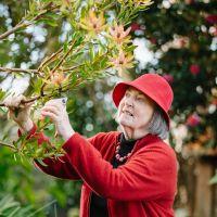 Margriet 2018 pruning John Shen.JPG